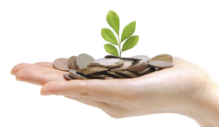Invest in start ups