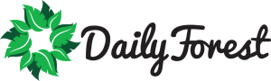 DailyForest Logo