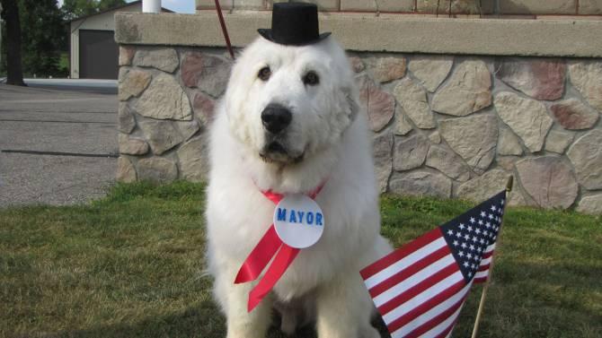 Mayor Duke1